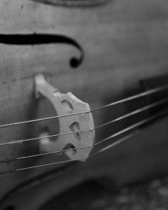 Sasha the cello
